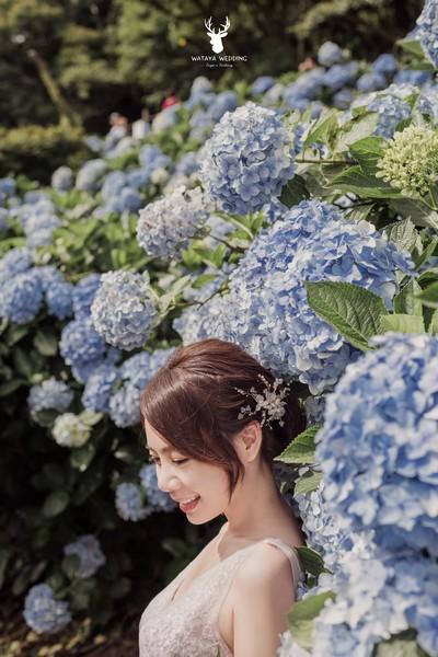 繡球花婚紗照