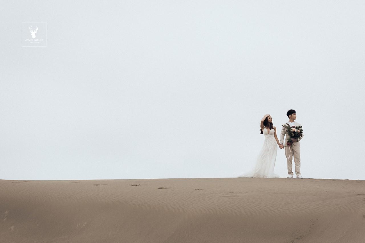 美式風格 草漯沙丘
