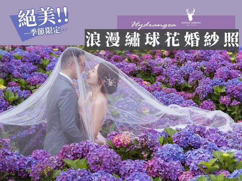 【季節限定!繡球花婚紗照】熱門婚紗打卡拍攝景點~春天裡的紫色浪漫